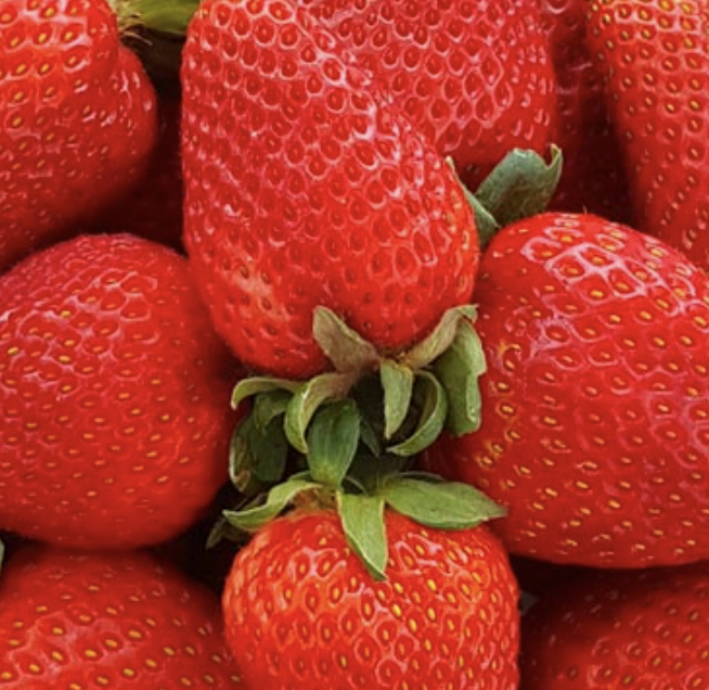 A close-up view of a pile of ripe strawberries